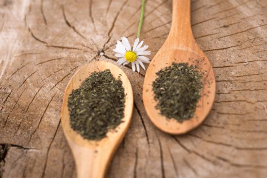 緑茶の糖尿病への効果はいかに